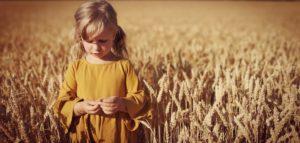 lapsi viljapellossa